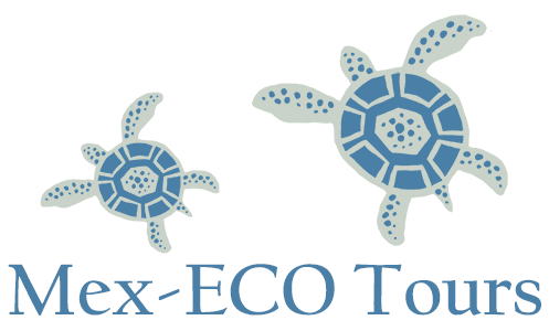 Mex-ECO Tours Logo